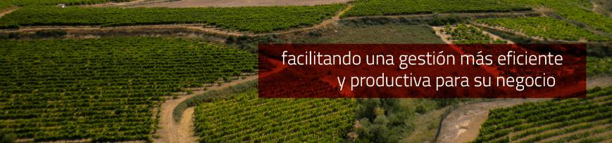 Facilitando una gestión más eficiente y productiva para su negocio - Argongra